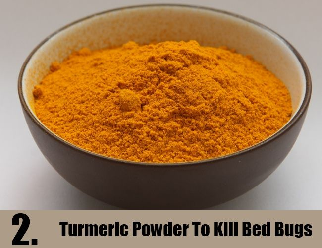 turmeric powder to kill bed bugs | bed bugs | pinterest | cleaning