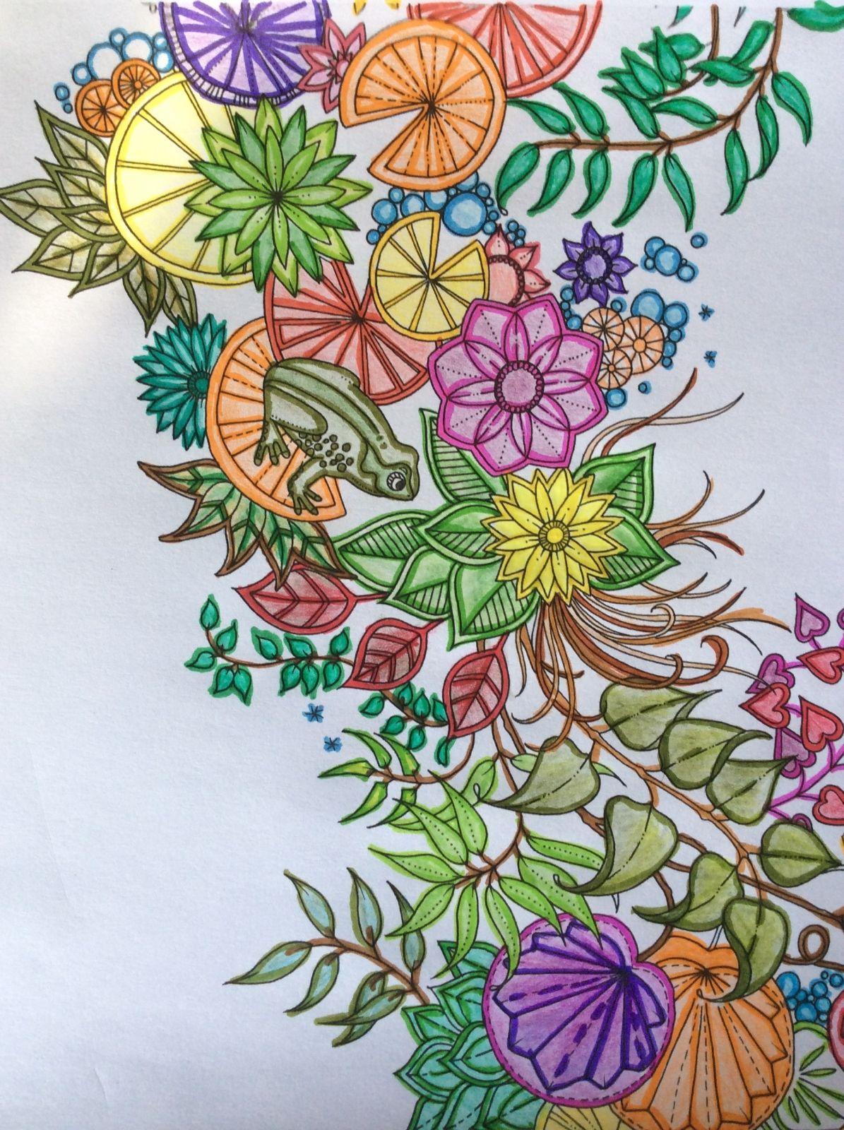 Kleurplaten Voor Volwassenen Mijn Geheime Tuin.Kleurboek Voor Volwassenen Mijn Geheime Tuin Potlood Met