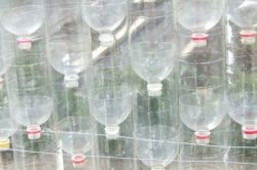 How I've built my greenhouse from plastic bottles, recycled wood and old fence posts. How it is doing, both structurally and horticulturally, what's growing in it, changing on it or falling off it.
