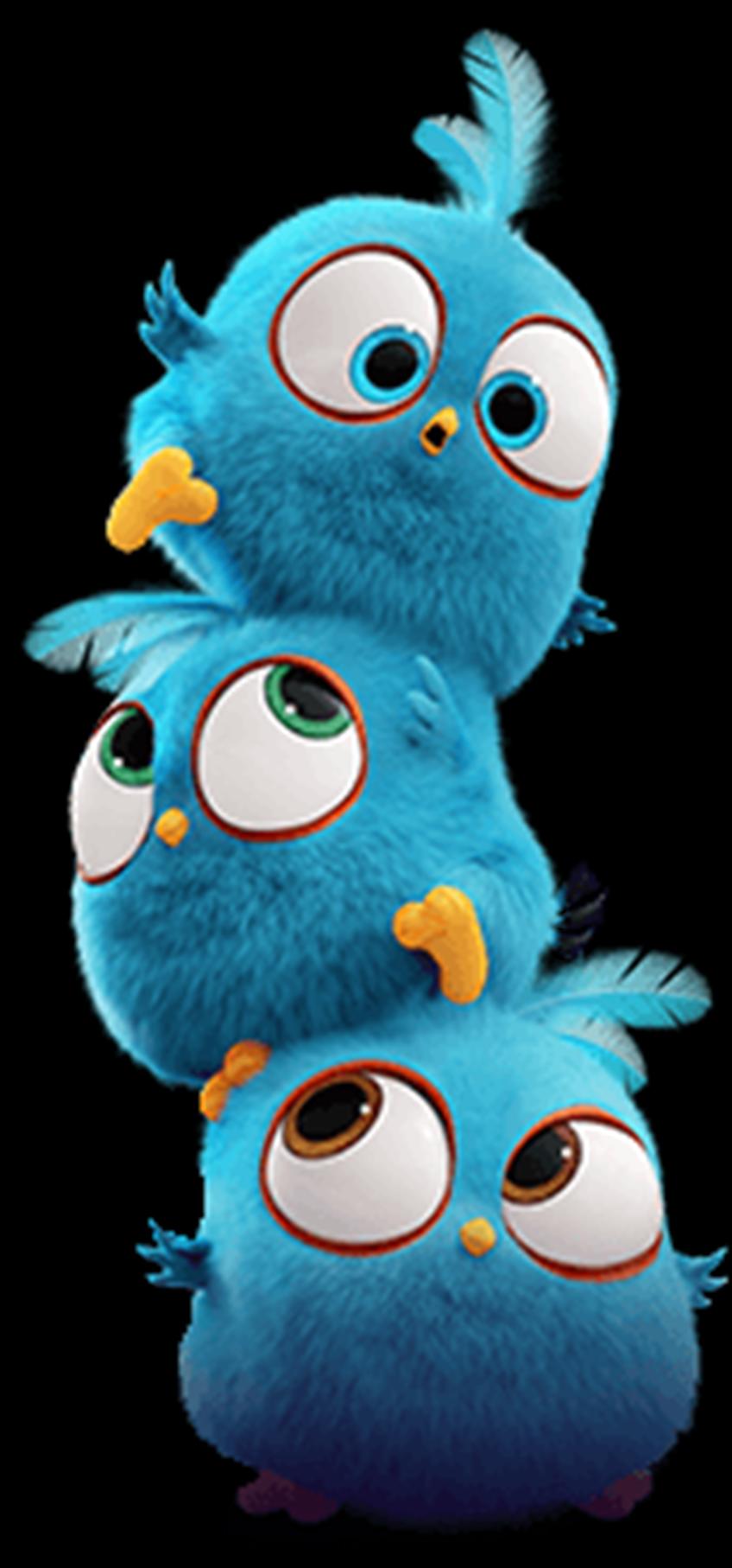 Jay, Jake, and Jim | Маленькие совы в 2019 г. | Смешные ...