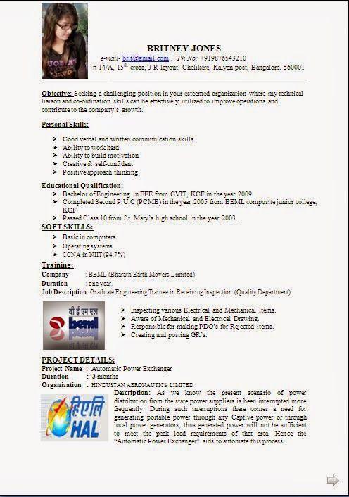 best cv profile Sample Template Example of ExcellentCurriculum Vitae