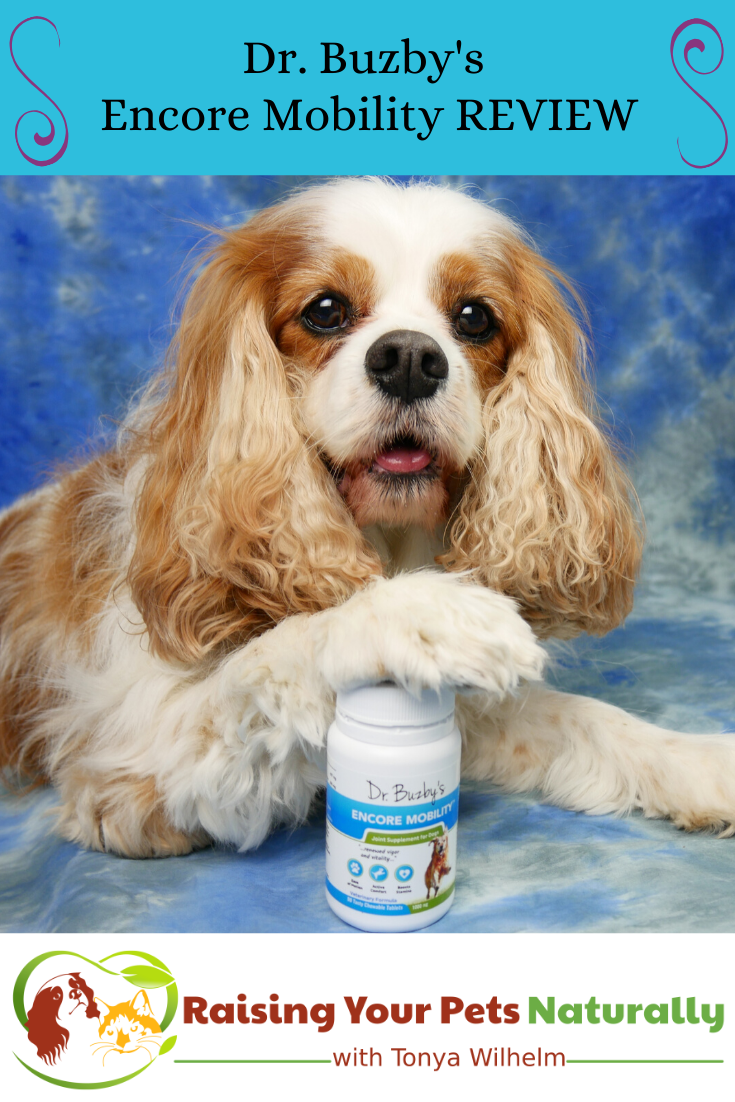 New Zealand Deer Velvet Green Lipped Mussel Supplements For Dogs Dr Buzby S Encore Mobility Review