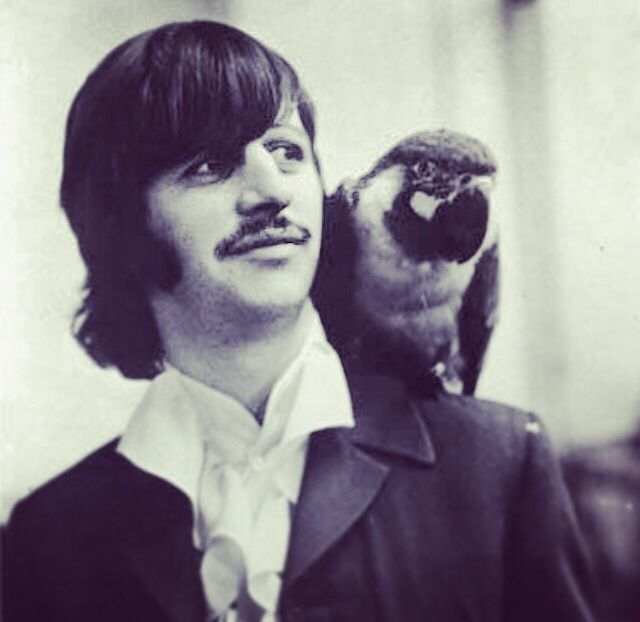 Ringo...  With a parrot! ;)