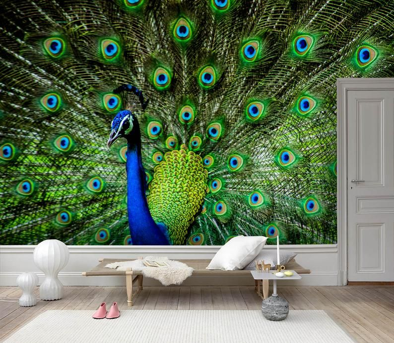 3d Gorgeous Peacock Feather Wallpaper Removable Self Etsy With Images Feather Wallpaper Mural Wallpaper Feather Wall