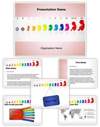 Fetus stages powerpoint presentation template is one of the best fetus stages powerpoint presentation template is one of the best medical powerpoint templates by editabletemplates toneelgroepblik Image collections