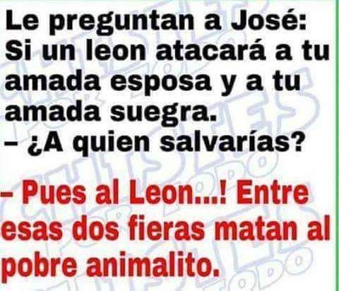 Perdon Suegra Jajajajaja Frases Adolecentes Memes En Espanol Memes Divertidos