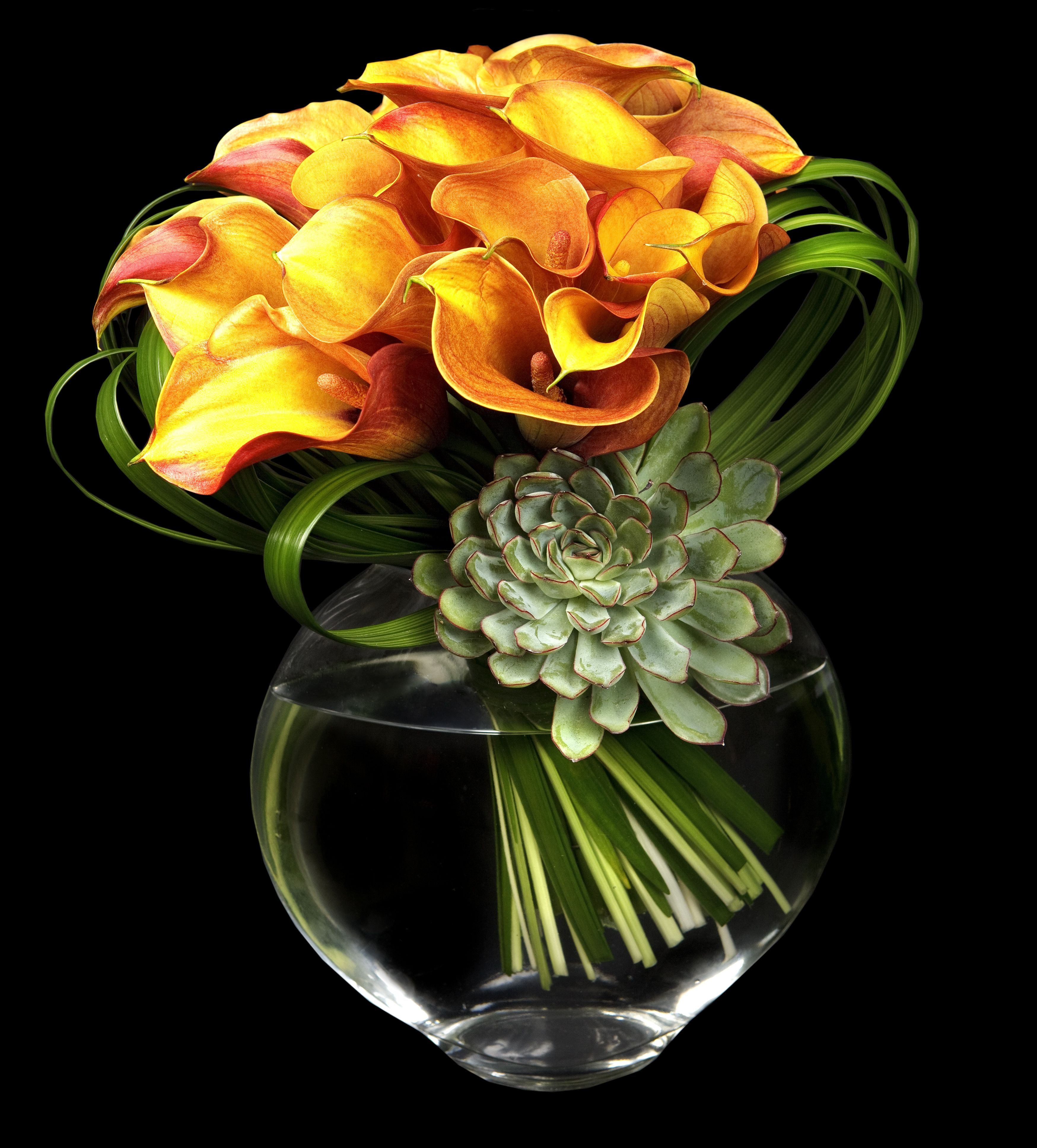 Florea tu hogar con estas pequeñas joyas contemporáneas