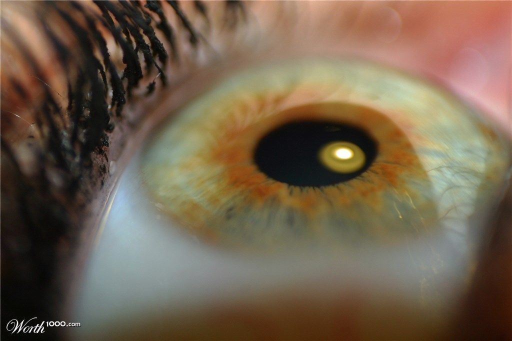 Eye - Worth1000 Contests