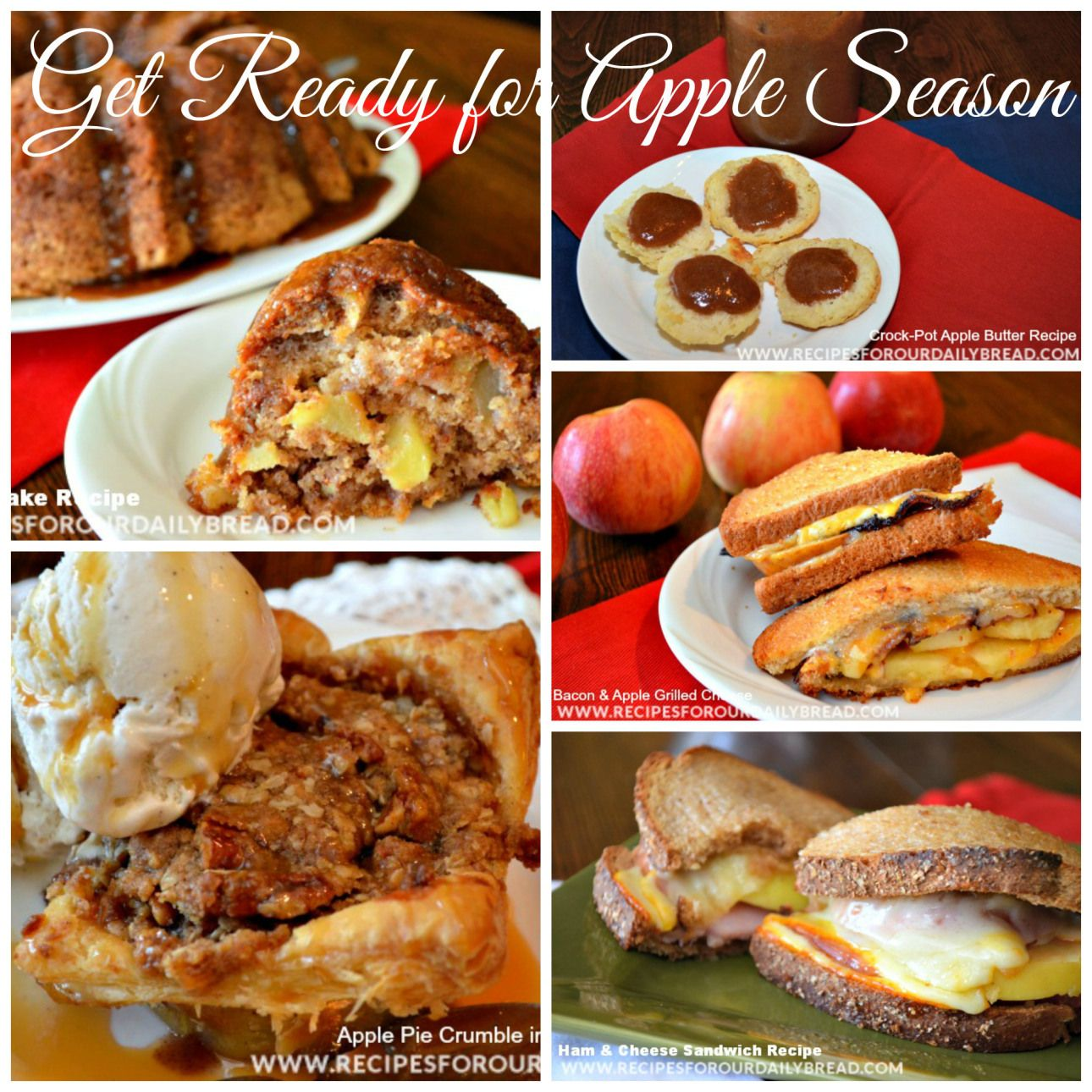 Amazing Apple Roundup http://recipesforourdailybread.com/2014/09/07/best-apple-recipe-roundup/