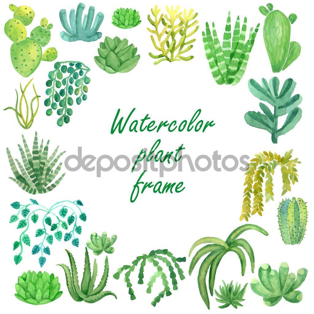 Plantas acuarela vector marco para texto ilustraci n de - Marcos para plantas ...