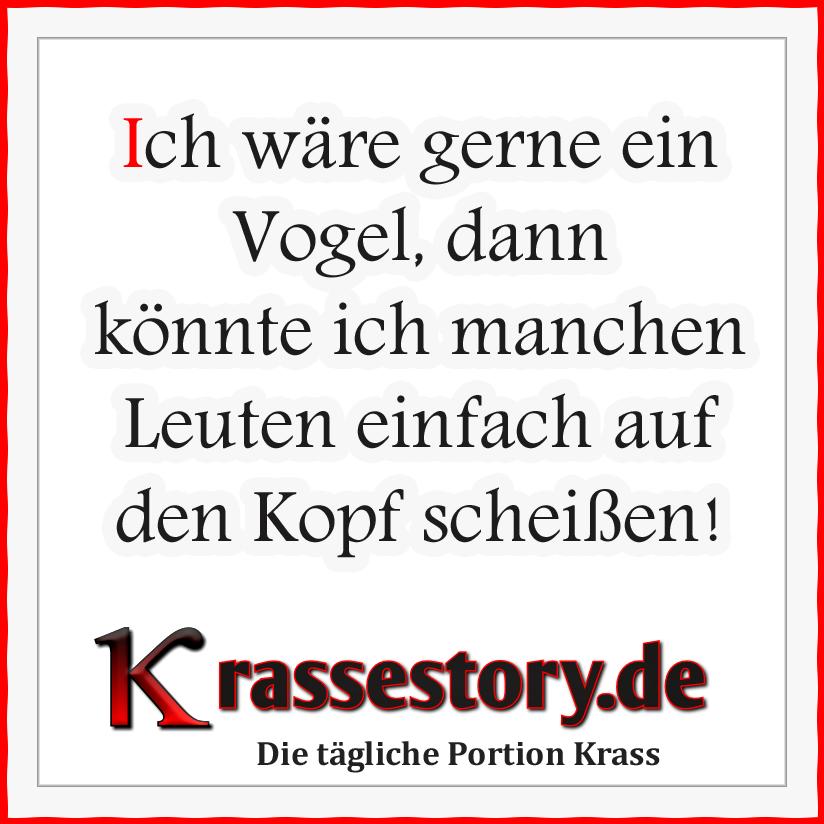 Krasse Sprüche Vogel Leute.png 824×824 Pixel