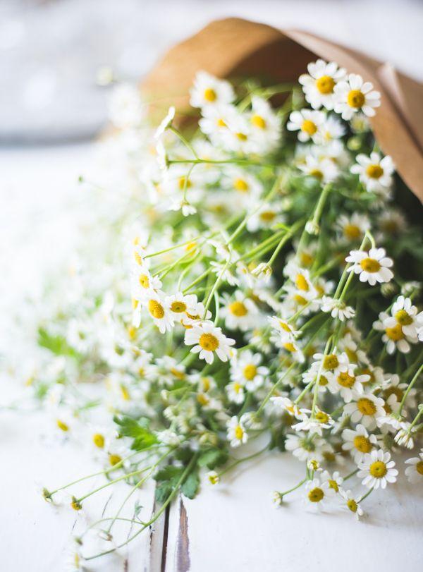 O Bojon Gourmet: Branco Nectarina Prosecco Sangría com Ginger & Elderflower, e por isso que eu disse sim a um negócio de livro (!)