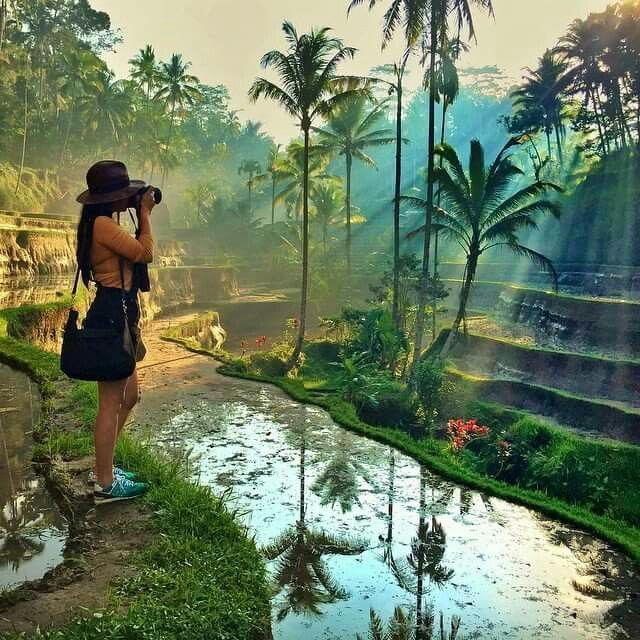 Perhaps The Most Picturesque Place In The World Bali Ricefields Balinese Ricefield Bali Travel Bali Travel Around The World
