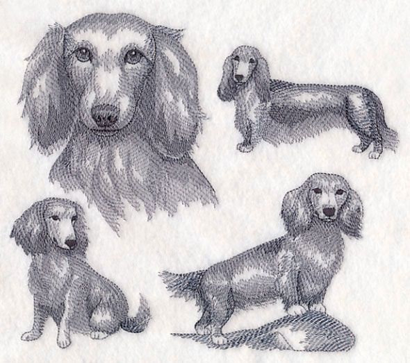 Long Haired Wiener Dog Sketch Design M10276 From Www Emblibrary