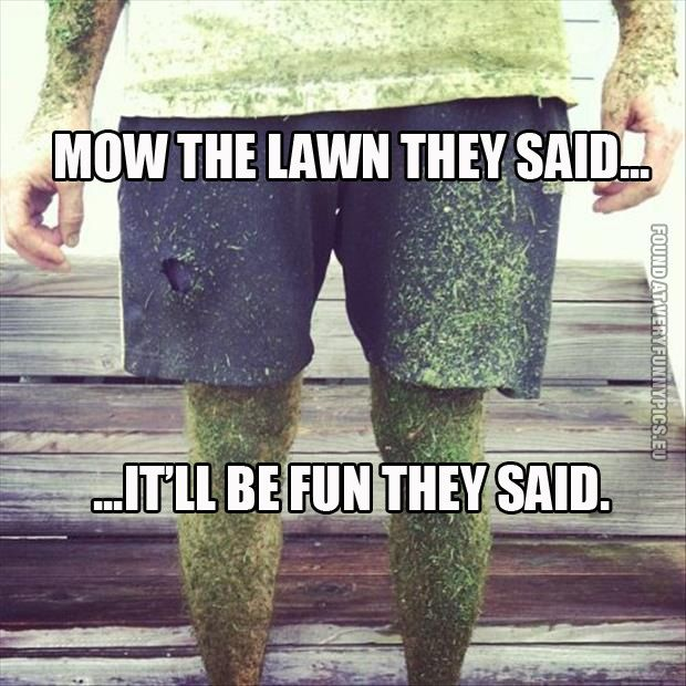 Mow the lawn they said...   Humor   Pinterest   Humor