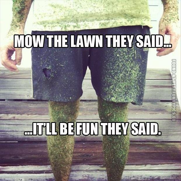 Very Funny Pics Lawn Care Humor Lawn Mower Lawn