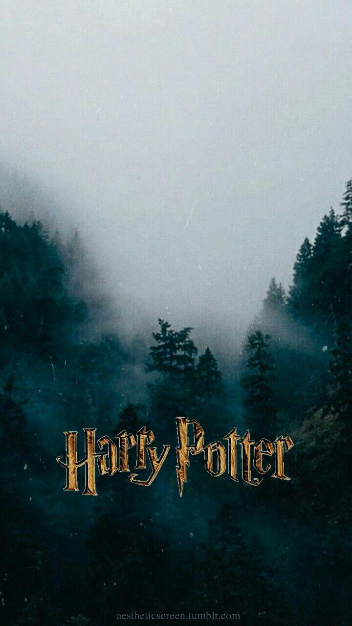 Popular Wallpaper Harry Potter Nature - 5a992897b7318bf76d9f6acc2fcd7dda  Snapshot_637424.jpg