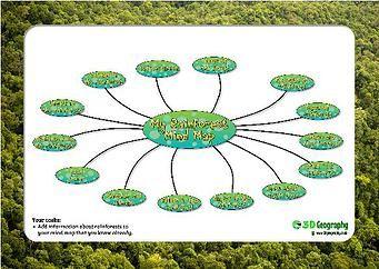 Rainforest Mind Map Worksheet Map Worksheets Geography For Kids