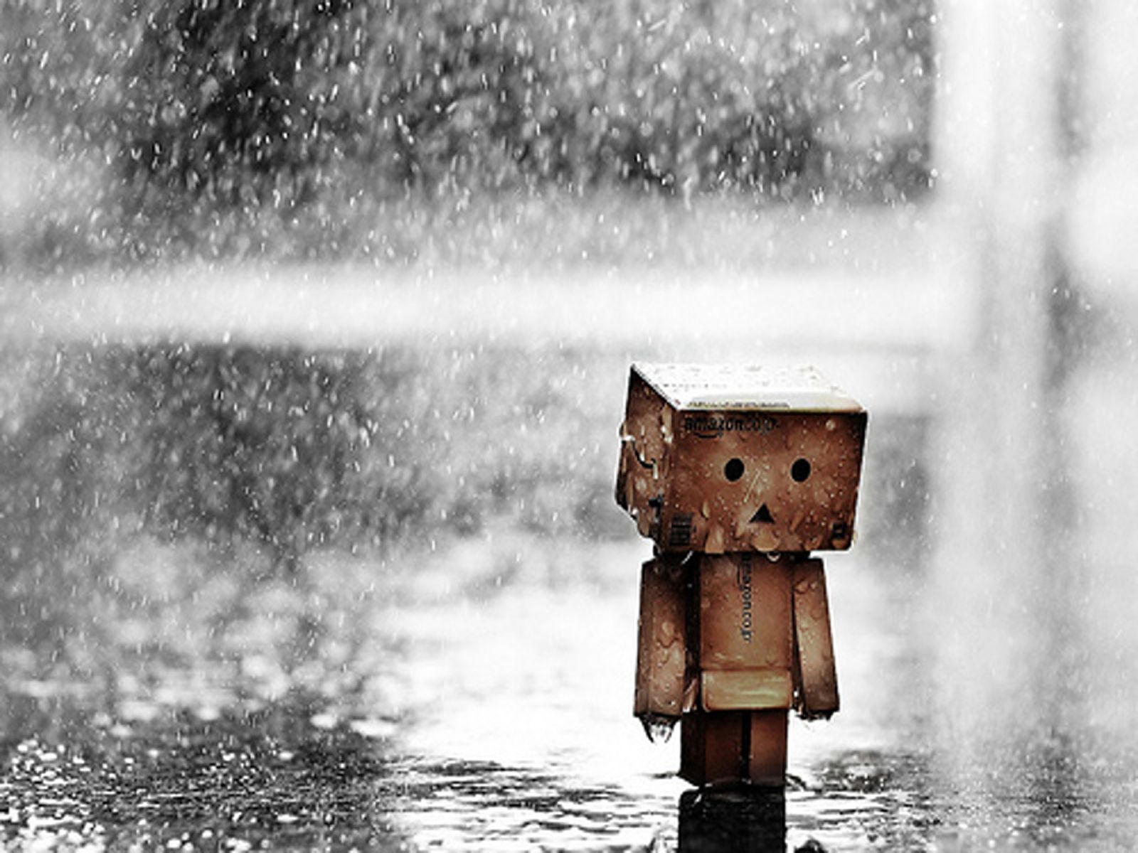 Sad Boxman Under Heavy Rain HD Wallpaper