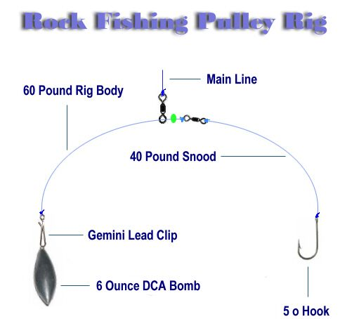 impact Shields for sea fishing pulley rig //bait clips
