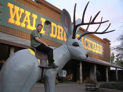 have your prescription filled at wall drug store s on wall drug south dakota id=46419