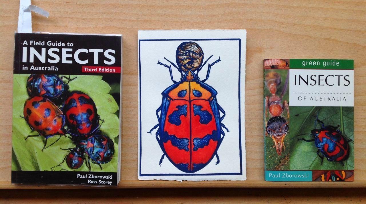 Deborah Klein's Art Blog: Cotton Harlequin Bug Woman