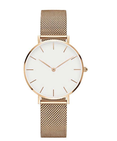 Fashion Big Brand Women Stainless Steel Strap Quartz Wrist Watch Luxury Simple Style Designed Watches Women S Clock Watchlovers Montre Montres De Luxe Horloge