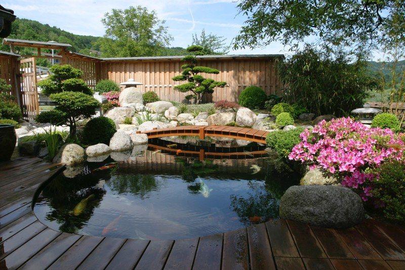 Artcane Jardin Japonais En Alsace Jardin Japonais Jardins Alsace