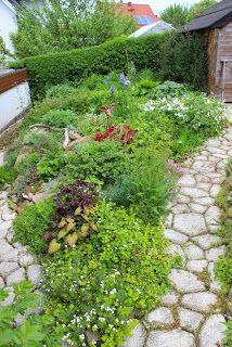 steingarten steinbeet anlegen garten pflanzen steine gestaltung weg - Gartengestaltung Steine