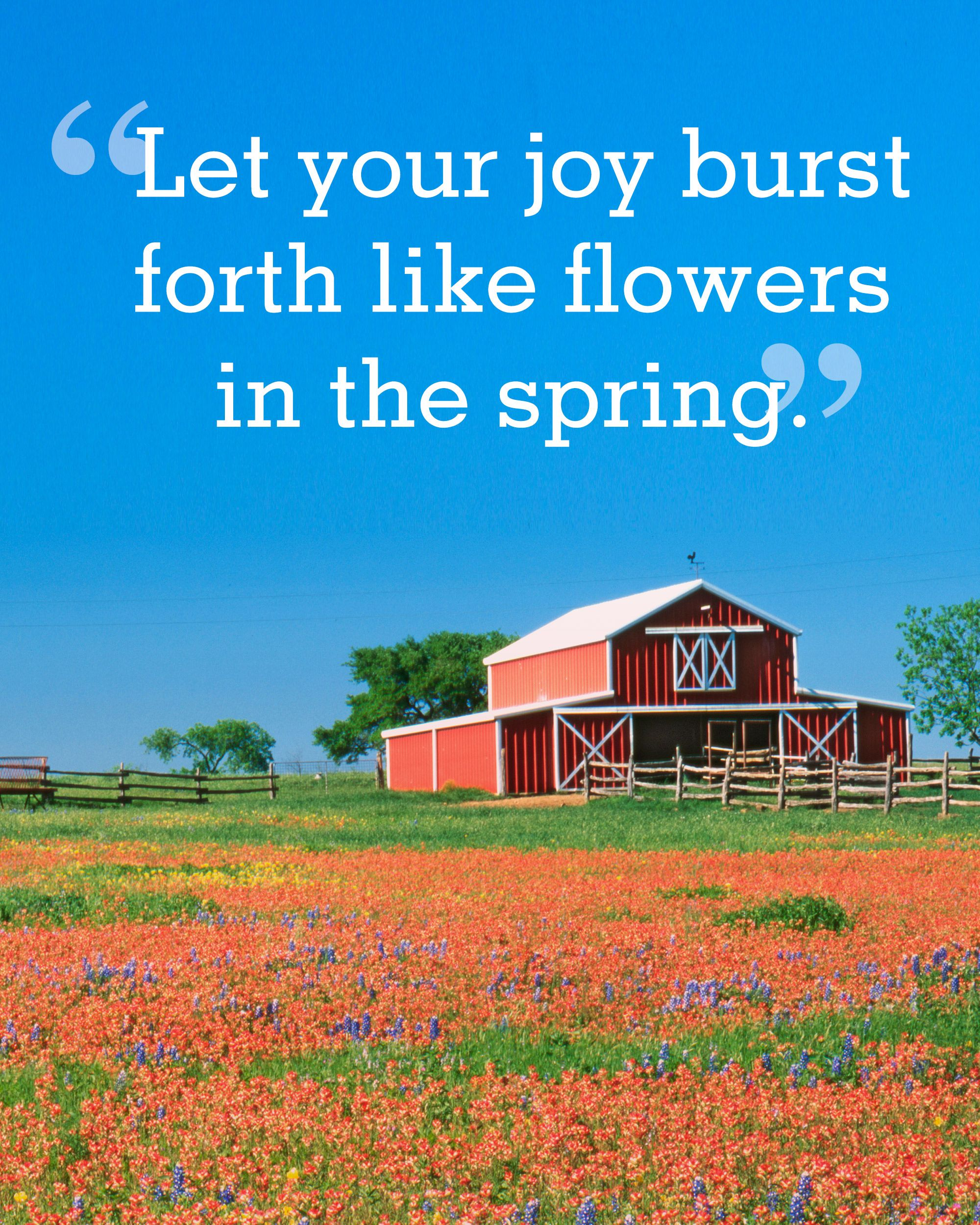 The Sweetest Spring Quotes to the Season of