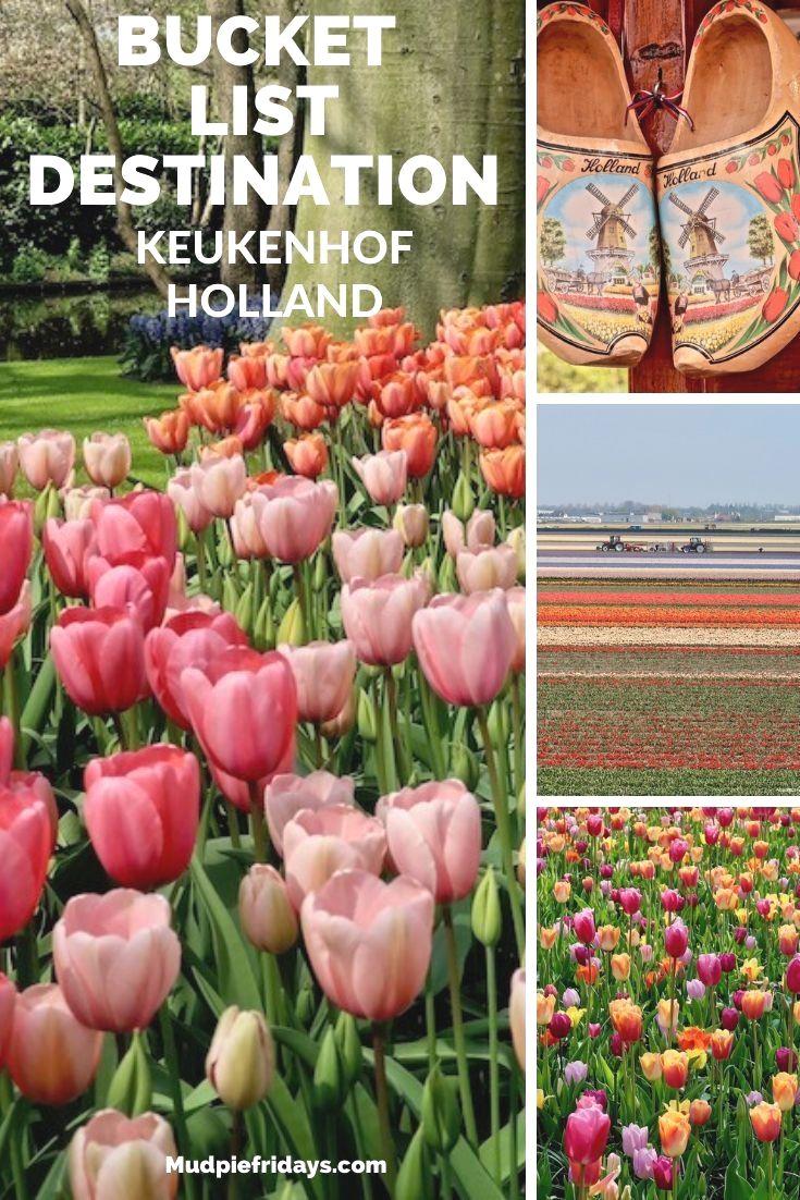 5a9e120de6d6613f9982837f39cf38a3 - Keukenhof Gardens Transportation And Skip The Line Ticket From Amsterdam