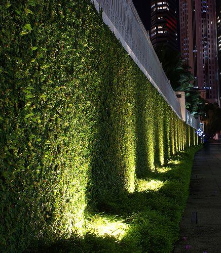 Vertical Garden Lighting Google Search Landscape Lighting