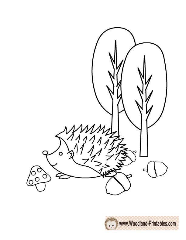 Adorable Hedgehog Coloring Page Animal Coloring Pages Coloring Pages Woodland Animals