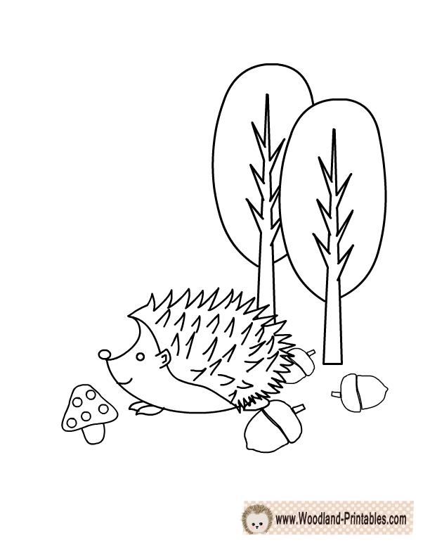 Adorable Hedgehog Coloring Page Animal Coloring Pages Coloring Pages Woodland Animals