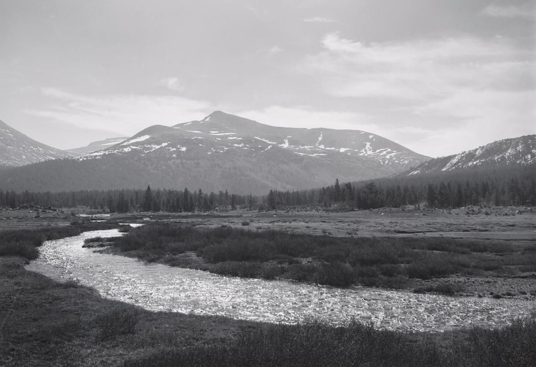 1946 Mount Gibbs, Dana Fork, Upper Tuolumne Meadows, Yosemite National Park [scintillating stream curving through grassy flat, line of conifers below peaks streaked with snow remnants, light clouds] by Ansel Adams 84.91.514