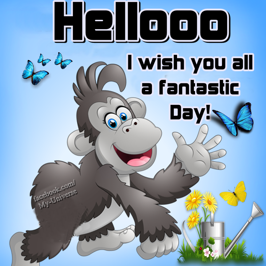 Hellooo I Wish You All A Fantastic Day Happy Wednesday Quotes Good Morning Wednesday Funny Day Quotes