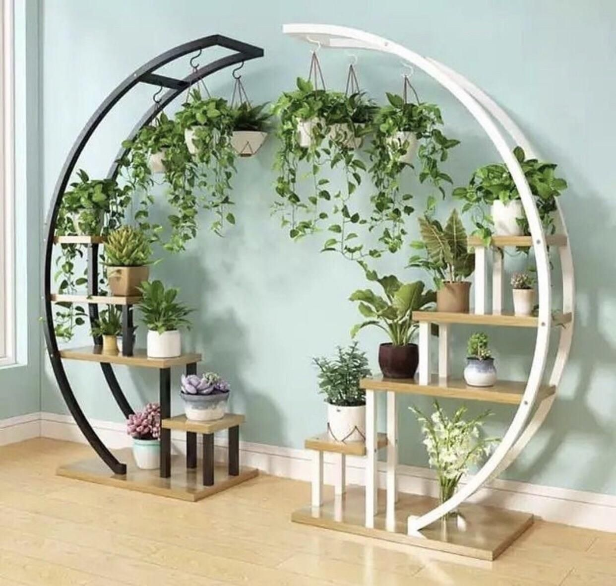 Photo of Glorious plant shelflike hangy plant contraption     houseplants,  #contraption #glorious #ha…