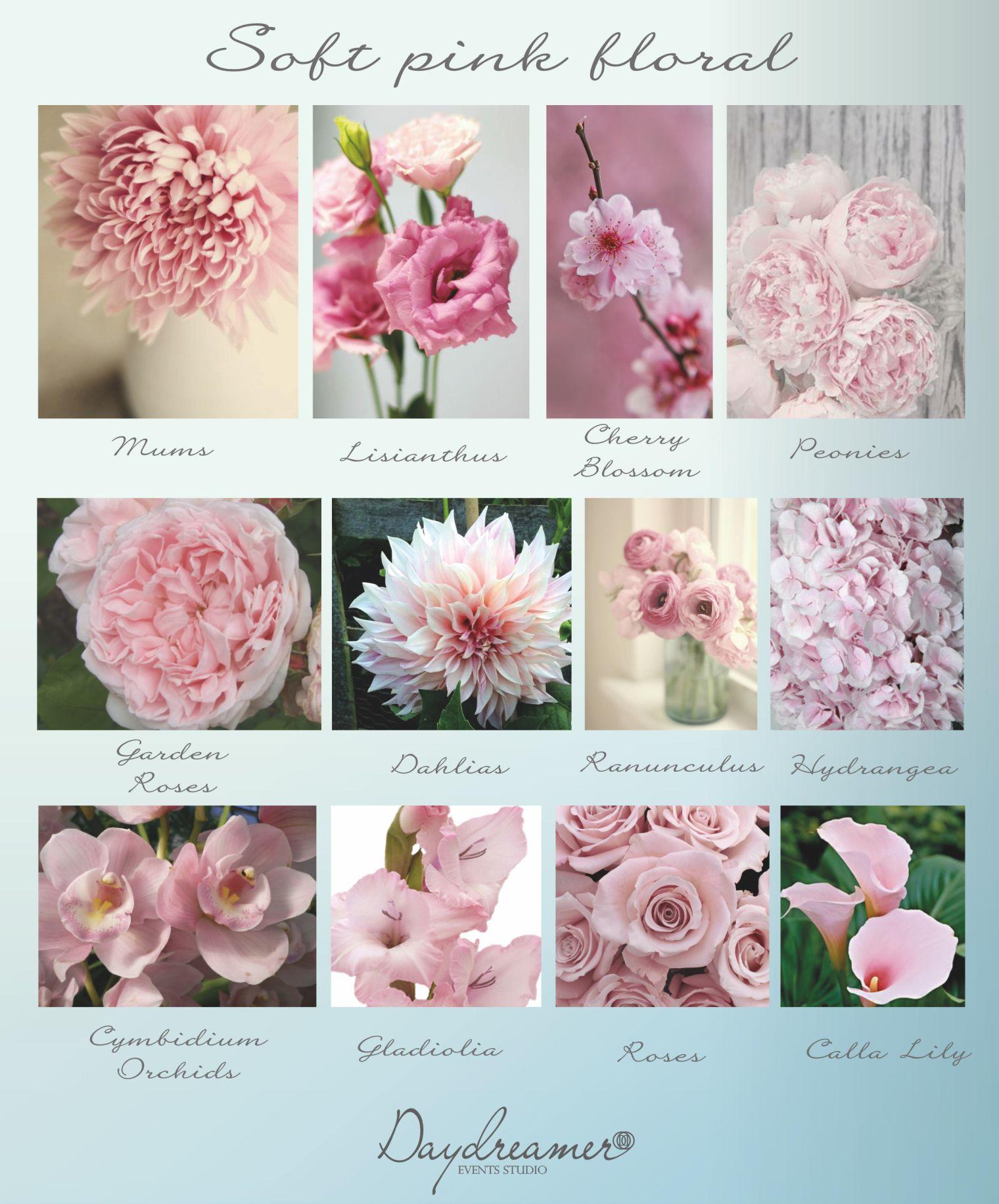 soft pink flower chart Pink flower arrangements, Pink
