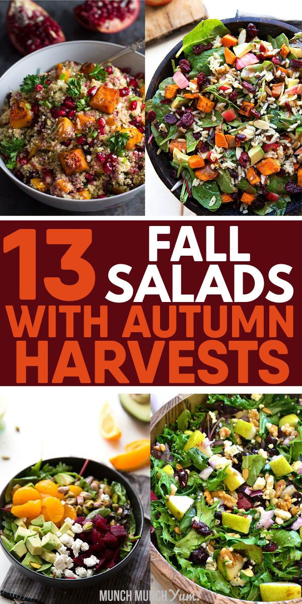 13 Fall Salads to Fall for This Autumn Best FALL SALAD RECIPES for one or for parties or a crowd. Healthy lunch or dinner ideas with autumn harvests like apple, pear, butternut squash, sweet potato, beets, brussels sprouts, kale, arugula, spinach, pumpkin seeds, cranberry, pomegranate, goat cheese, feta, wild rice, quinoa, lentils, pecans, candied walnuts. From easy, simple pasta to hearty warm chopped salads with fancy poppyseed dressing. Great for Thanksgiving! Vegetarian, vegan, low calorie, light