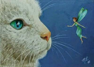 Cat and Faerie