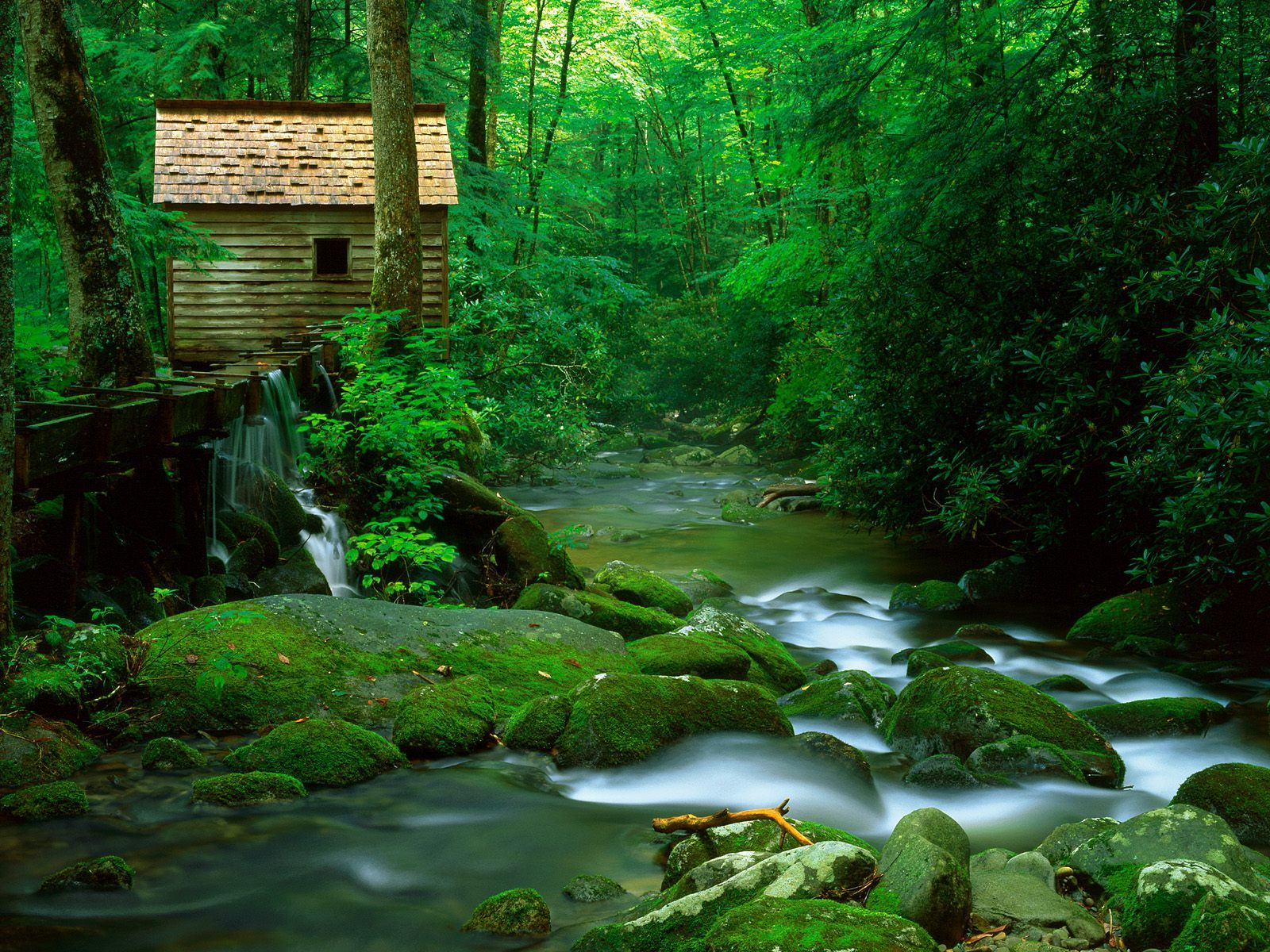 Reagan Mill, Roaring Fork, Great Smoky Mountains National Park, Tennessee US