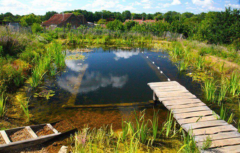 Sabe como se faz uma piscina biológica e natural?