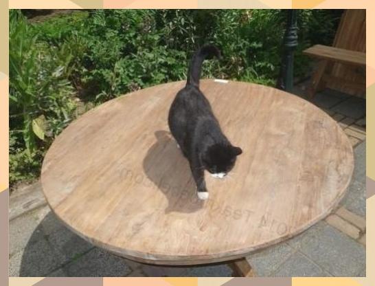 Teak Tisch Rund O 140 Cm Altes Holz Image 2 Altesholz Teak