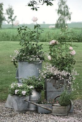 Old metal watering cans and buckets turned into planters for a vintage style garden.