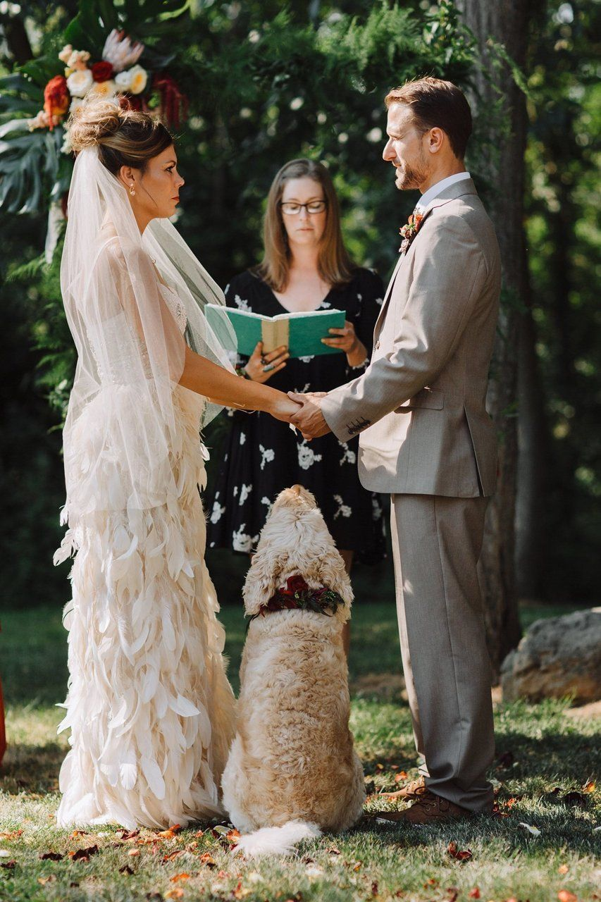 OMG LOOK AT THIS DOG WATCHING ITS HUMANS GET MARRIED