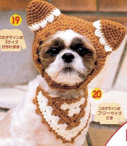 crochet hat for little dog
