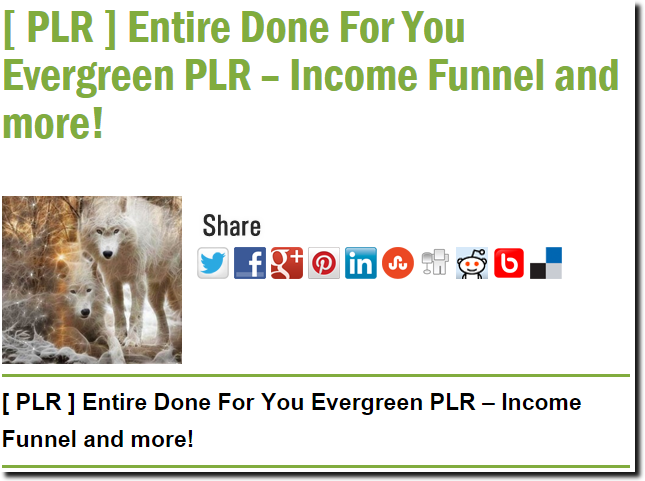 [ PLR ] Entire Done For You Evergreen PLR – Income Funnel and more!