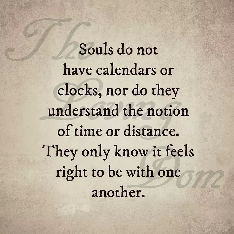 Happy Hippie Quotes 24 Soul Connections Steemkr