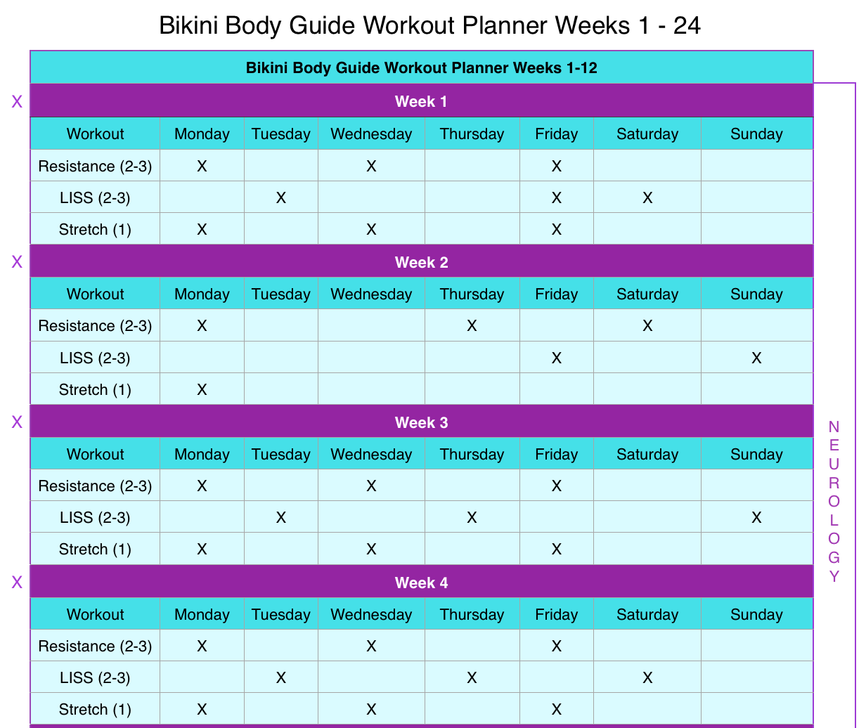 BodyBoss 12 Week Fitness Guide Review| Trendmebeauty