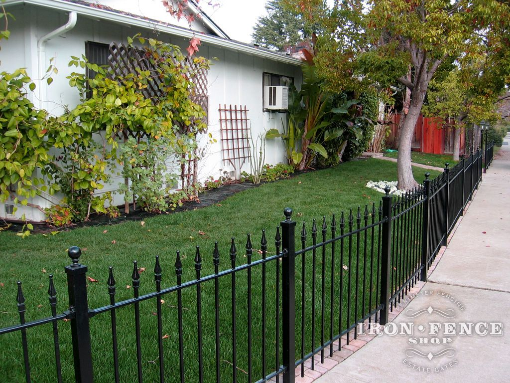 Our Elegant 3 Foot Stronghold Iron Fence Wrapped Around A